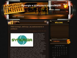http://www.synergia.org.pl
